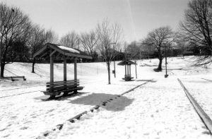 Snow in the park by saamhashemi