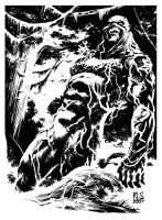 Swamp Thing by ronsalas