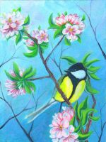 Titmouse on apple tree by Anary