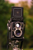 New-Old Yashica D by prestonthecarartist