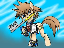 Sora Ponified (Done) by pikashoe90
