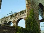 Arches and Ivy I by bluegoldrose