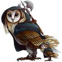 Barn Owl SCC by CatInYourCloset