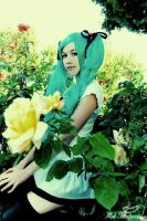 Vocaloid: In My Garden by epic-phail-cosplay