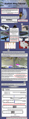 Realistic Wing Tutorial - P.5 by Sunnybrook1