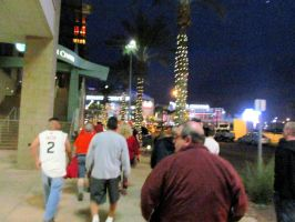 Downtown Phoenix Christmas Trees by BigMac1212