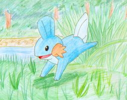 Mudkip leaps by Kara-tails