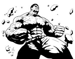 Hulk - The Other Guy by LRitchieART