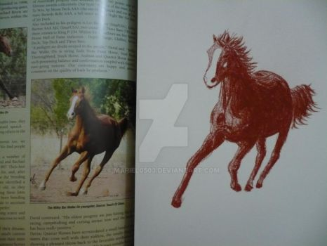 Chesnut horse with reference by Mariel0503