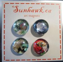 Nature Magnets by sunhawk
