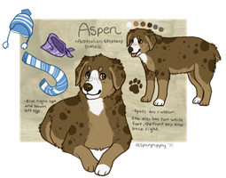 Aspen Ref 2011 by AspenPuppy