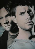 Supernatural Redone by LianneC