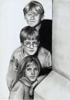 Harry, Ron, Hermione by Megneoulie