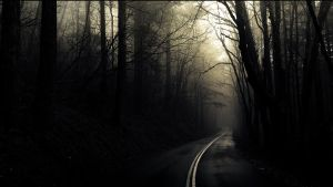 Dark road in the forrest by ecKKKo