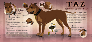 Tazzie's Feral Reference Sheet 2015. by Serphire