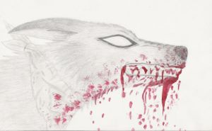 Angry Killer Wolf by Elkenar