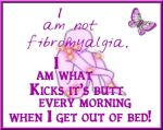 Kick Fibro by KatKime