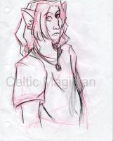 Zev-Wolf-Prince: In Class by CelticMagician