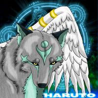 Haruto- Guide of Wind by Cylithren