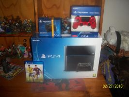 PS4 for my  birthday by sinako777