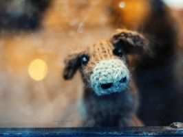 feeling woolly by BlauBeerKuchen