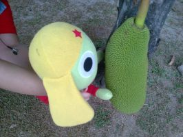 Keroro, met his match? by 11KairiMayumi11