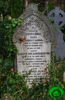 The Gravestone in the Ivy by Idraemir