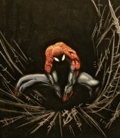 Spectacular Spiderman by 1HansJacob1