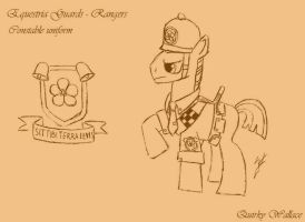 WTWE Equestria Guards - Rangers by QuirkyWallace