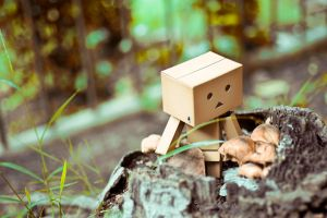 Danbo's Adventure by Nendotan