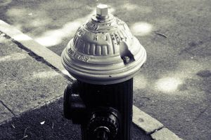 Fire Hydrant by LUZ-D