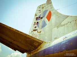Abandoned Air Planes - Paris Texas by element321