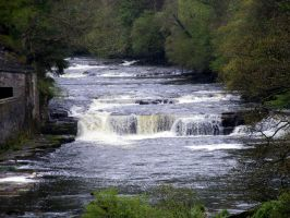 Dundaff Linn - The Falls of Lanark by printsILike