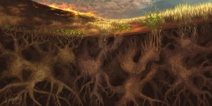 A forest beneath the ground by eliap