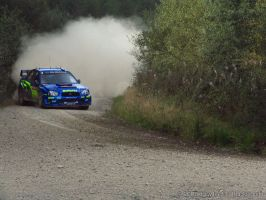 Crychan SS10 - P.Solberg by buckas