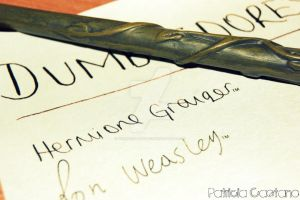 Dumbledore's Army by themagicofpotter