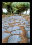 One Road that Leads to Rome by nemamane