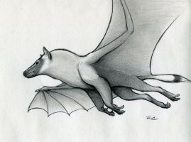 Bat Griffin by RobtheDoodler