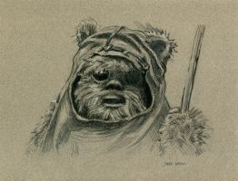 Ewok Wicket by Stungeon