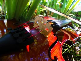 Violin In The Weeds by OutBack-Art