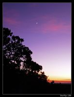 Sunset Moon by DarthIndy
