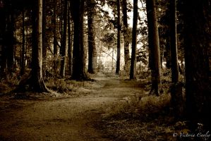 Sepia Path by CoolVictories
