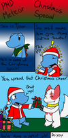 PMD Meteor Christmas '10 by BuizelKnight