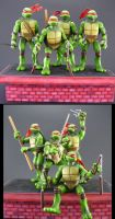 TMNT Group by Jin-Saotome