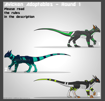 Avicken Draw to Adopt Round 1 FINISHED by SuccessfulDropOut