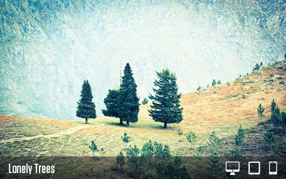 Lonely Trees by pedroL