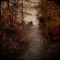 Le chemin by natdia