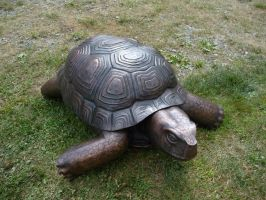 Copper Tortoise Sculpture by jeremymaronpot