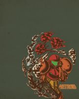 Metroid Memories by zacc-stra