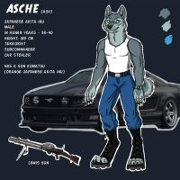 Asche reference by BullTerrierKa